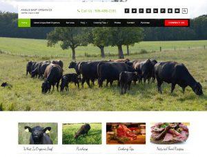 Angus East Organics Website Design Internet Marketing